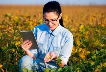 IBGE: Cresce participação feminina no campo