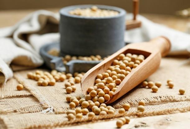 Apesar da queda, preço da soja proporciona lucro de 16%