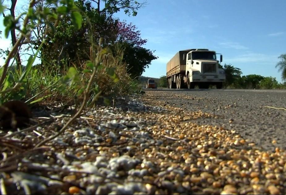Das rodovias até os portos, Brasil perde 0,17% do trigo