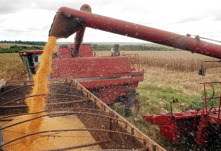 Brasil pode superar EUA na produção de soja