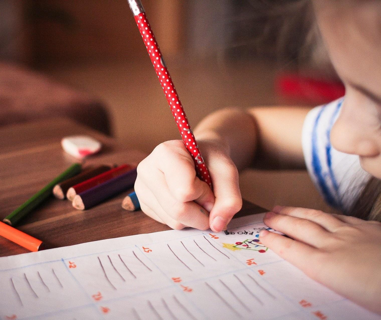 TJ  Paraná declara inconstitucional lei que estabelece o homeschooling em Cascavel